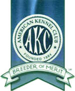 akc-breeder-of-merit.png